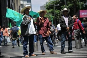 Mexico – 5000 agriculteurs manifestent contre l'ALENA !