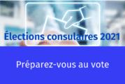 Les élections consulaires pour les NULS ! Votre guide pour bien voter au Mexique…