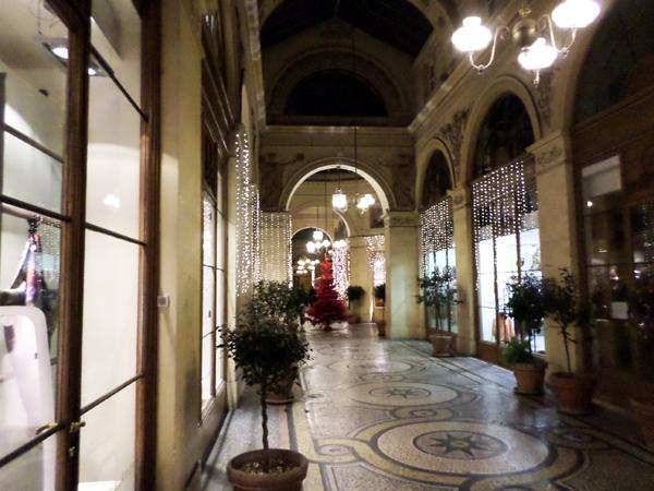 Iris Cantabri Galerie Vivienne