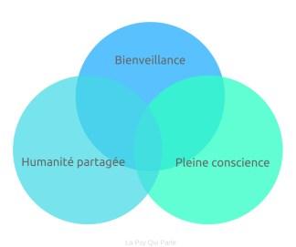 composantes auto compassion