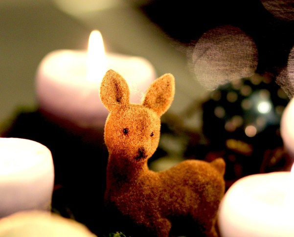 advent-wreath-573264_1280