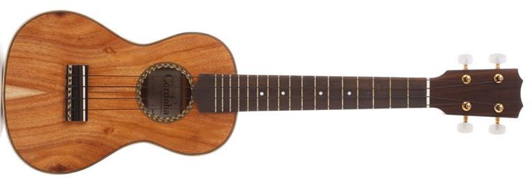 koa wood ukulele cordoba on the laptop sessions acoustic cover songs music video blog
