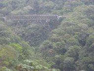 In bridge we trust