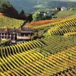 Il Monferrato e Lomellina insieme per il turismo esperienziale