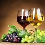 Piemonte e Marengo sulle etichette dei vini Doc