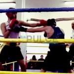 Boxe Tortona, ricominciano i corsi e gli allenamenti