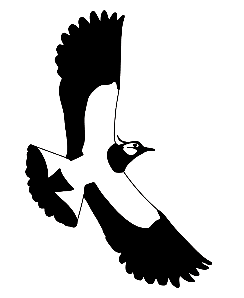 Lapwing Conservation.org