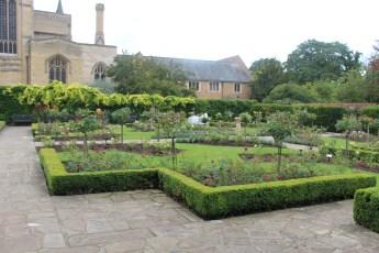 IMG_4332 Rose Garden