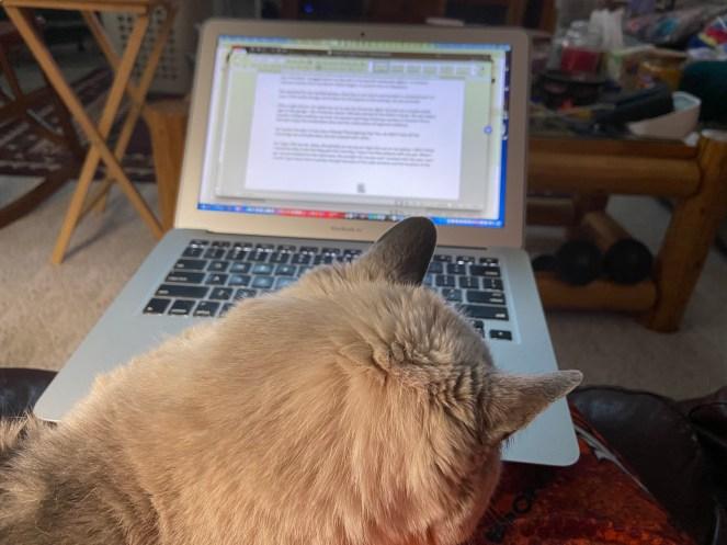 Jesse helping me Type!