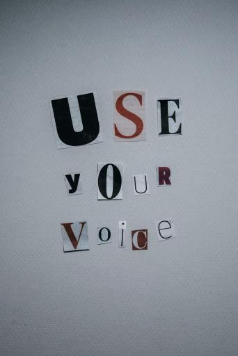 Use your voice - domestic violence