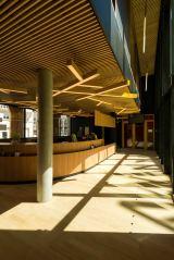 Luminaires Arbres - Hall