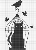 chat cage entier