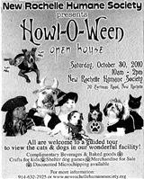 howl-o-ween-1