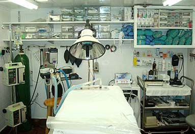 Larchmont Animal Hospital opeating room. Picture of operating table and lights