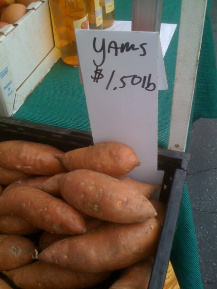 Yams at Larchmont Farmers Market