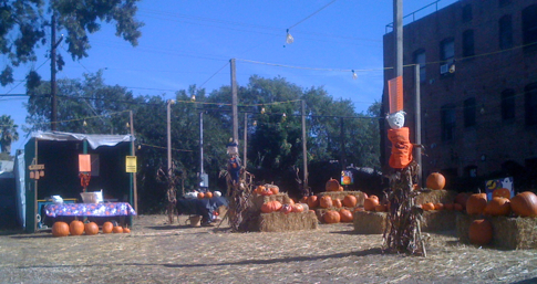 Pumpkin Patch on Larchmont Boulevard