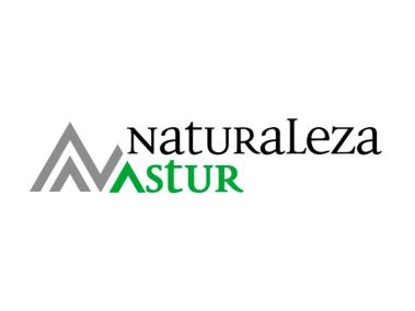logo_nastur