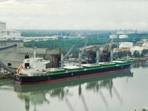 Recibe el Puerto de Altamira al buque más grande de Granel Agrícola