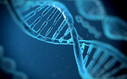 Hoy una secuencia de ADN se logra en días; antes tomaba 10 años