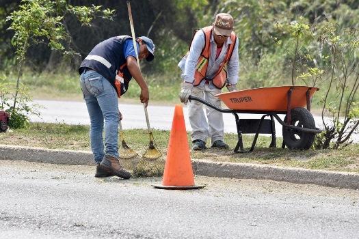 Refuerza Gobierno de Altamira labores de mantenimiento en la ciudad