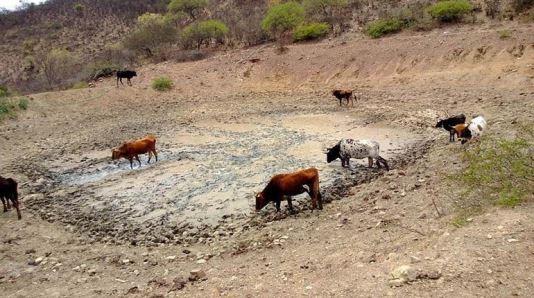 Piden productores y campesinos perforar pozos en busca de agua