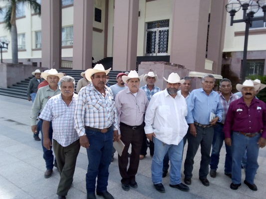 Citricultores piden plan emergente para rescatar producción de naranja