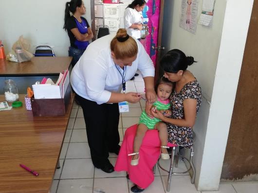 Iniciará en Tamaulipas campaña de vacunación contra la influenza