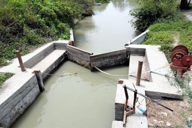 Reparación del dique El Camalote para el 2021