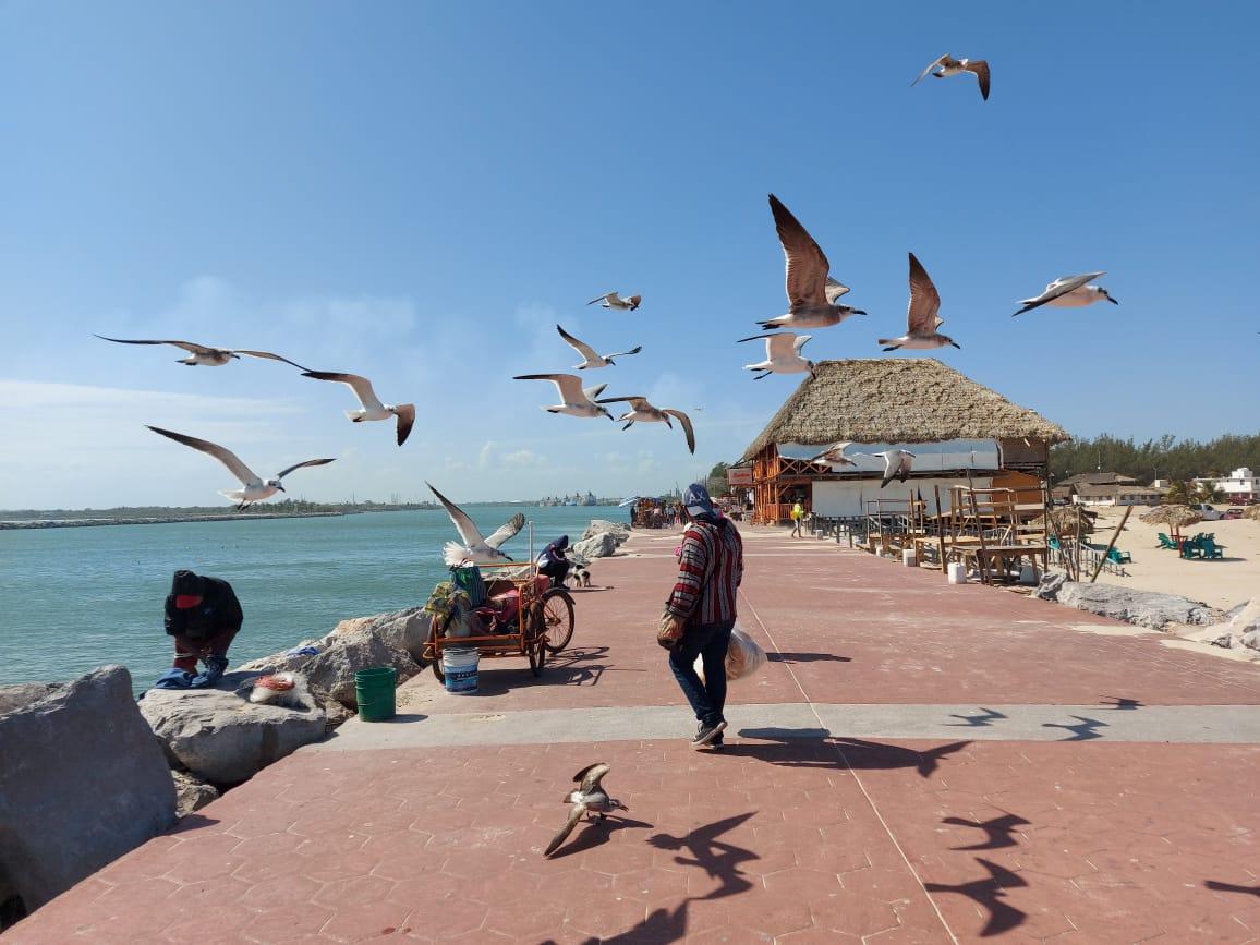 Piden a maderenses dejar espacio para turistas en Playa Miramar