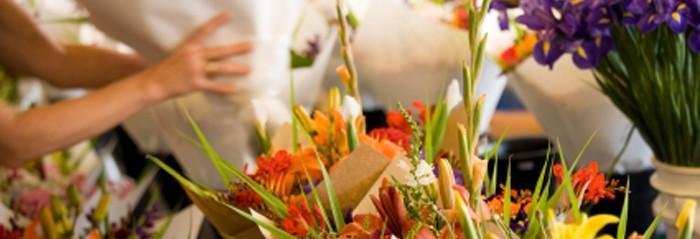 EU inspecciona más de mil millones de flores y encuentra 1 mil 977 plagas