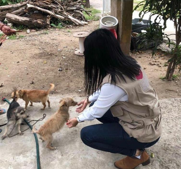 Impulsan en el municipio acciones de protección animal