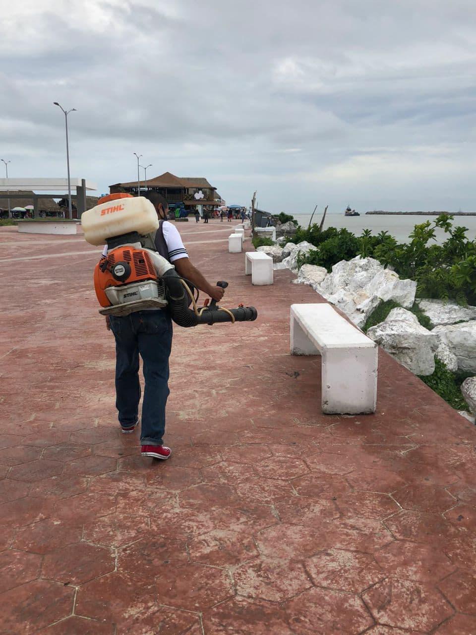 Sanitiza municipio a Playa Miramar