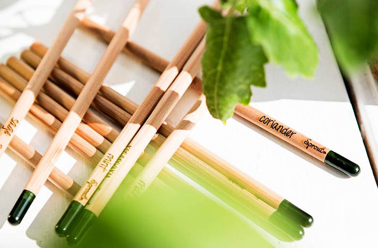original_set-of-sprout-herb-colouring-pencils