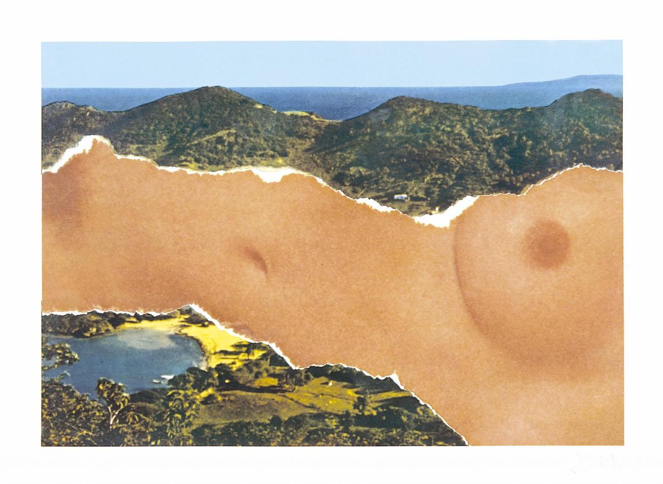 Saint Martin Landscape 1979 by Ellsworth Kelly born 1923