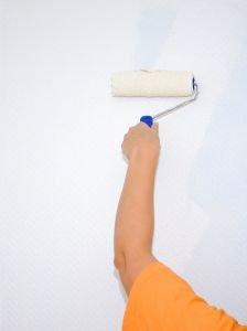 Peinture Couvrante Mur Defaut : peinture, couvrante, defaut, Peindre, Rouleau