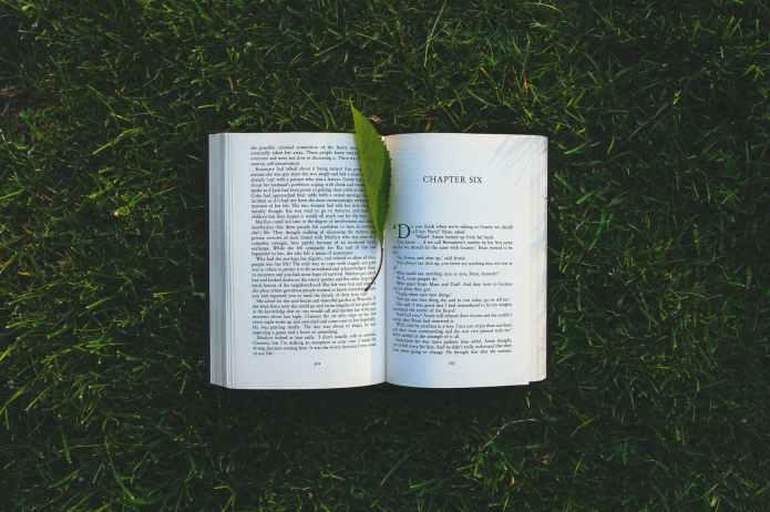 Formas de disfrutar de los pequeños momentos: leer