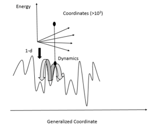 Protein Energy Landscape