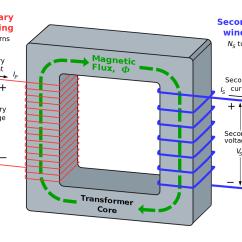Simple Function Diagram Venn Dna And Rna Transformer Losses