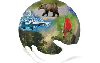IUCN Guidelines for Connectivity - French Cover Art