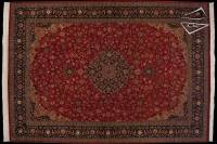Persian Design Pakistani Rug 12' x 17