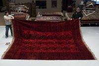 triumph carpet cleaning calgary reviews - Home The Honoroak