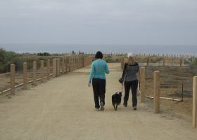 San Clemente residents enjoying a morning walk on their cities new trail.