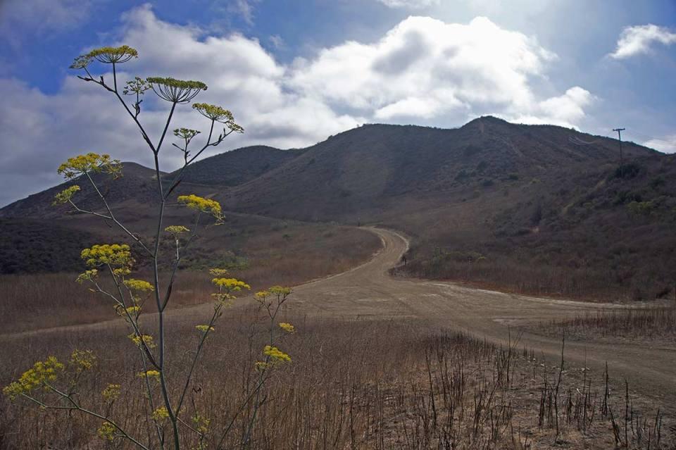 The final uphill portion on the Car Wreck trail in Laguna Beach. (Niko LaBarbera/Lariat)