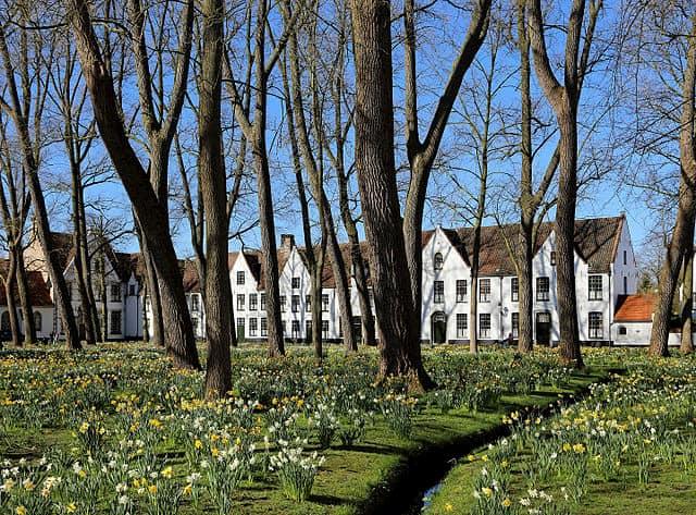 Cosa fare a Bruges in un giorno? Visitare il begijnhof