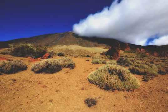 Tra le cose da vedere a Tenerife c'è senz'altro El Teide