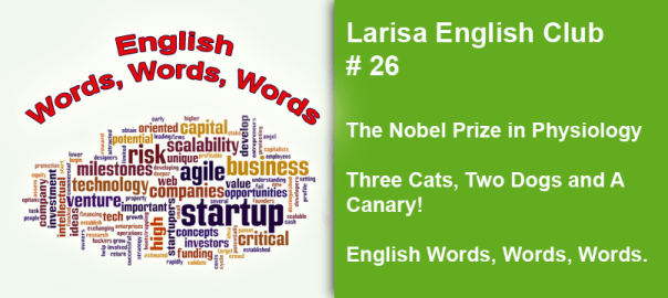 Larisa English Club #26