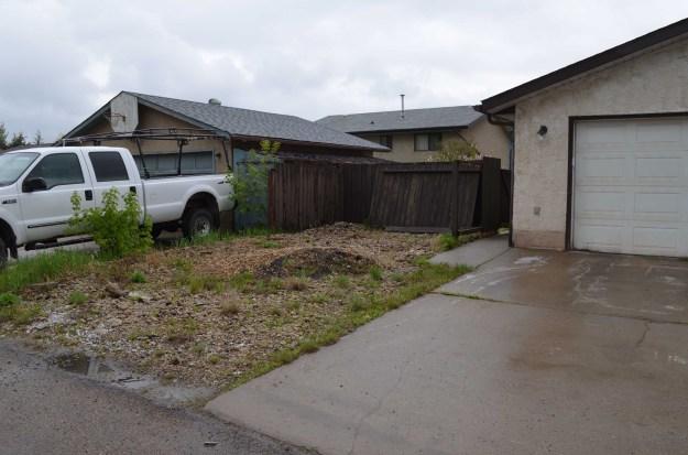 Backyard (3)