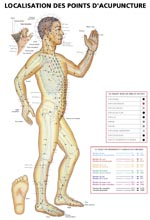 Larivière Meunier | Localisation des points d'acupuncture