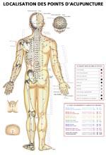 Localisation Des Points D Acupuncture : localisation, points, acupuncture, Larivière, Meunier, Localisation, Points, D'acupuncture