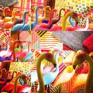 a collage of flamingos to accompany my Artist's Statement